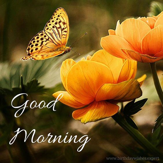 صور good morning flowers صور ورد مكتوب عليها صباح الخير بالانجليزية 1