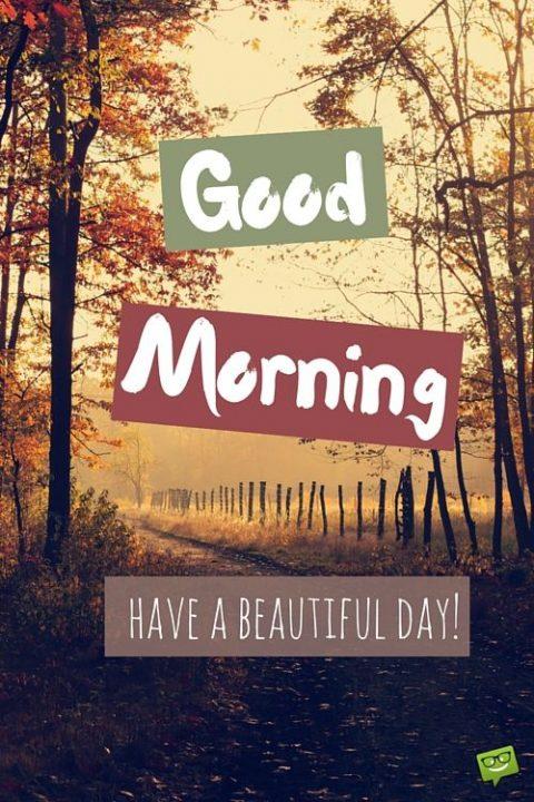 صباح الخير بالانجليزية في الخريف