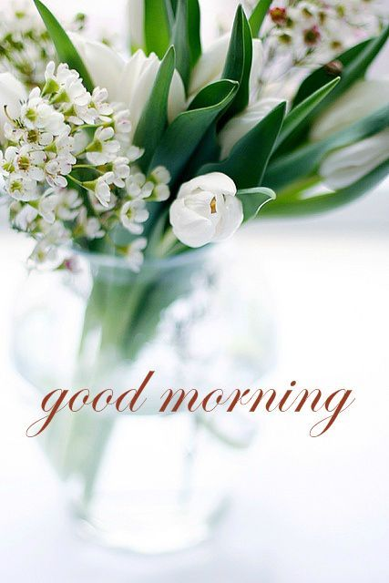 صباح الخير بالانجليزية مع ورود