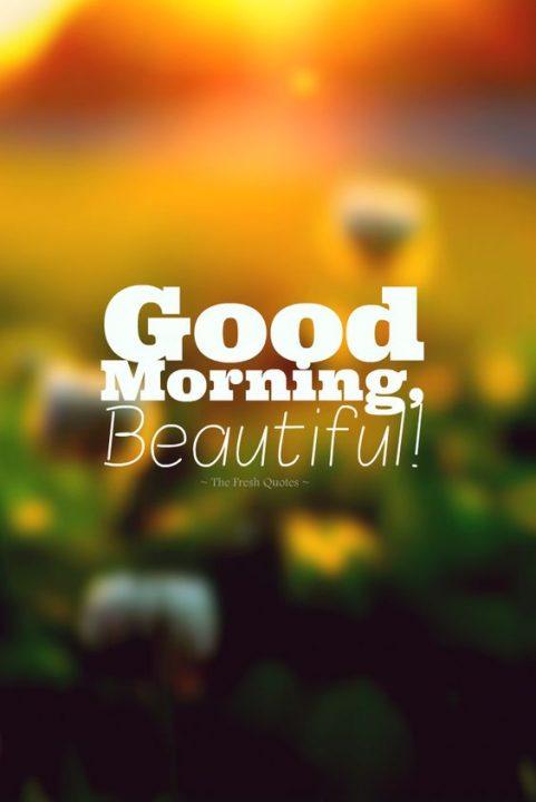 صباح الخير يا جميل بالانجليزية