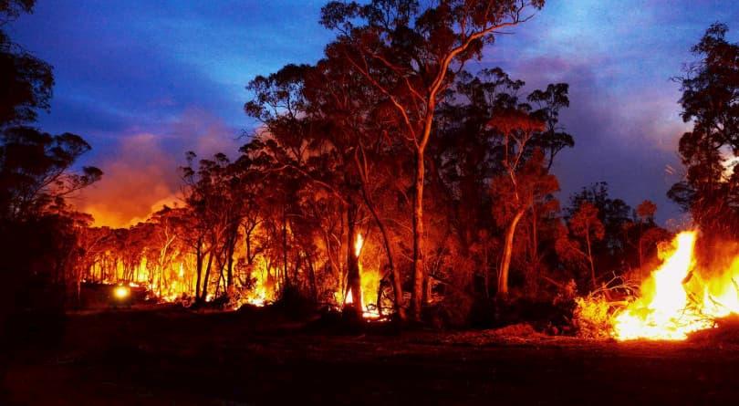 الدخان من الحرائق الاسترالية الى سماء العالم 3